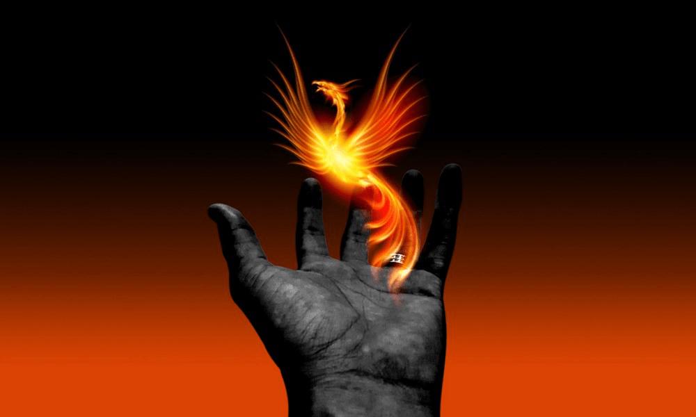 Wie der Phoenix aus der Asche